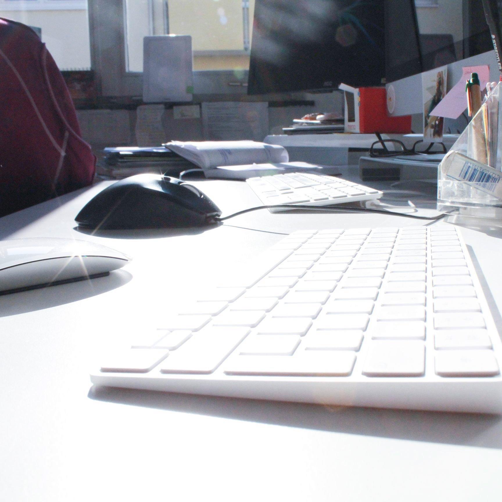 Jobs - Arbeiten bei conceptplus
